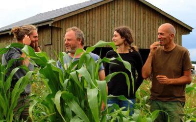Canopée, une coopérative en agroforesterie dans la région d'Arlon